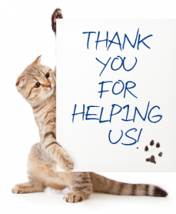 Thank You For Your Cat Food Donations